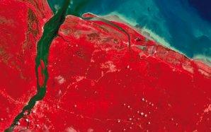 Côte de la Guyane au niveau de l'embouchure de la Mana en 1987
